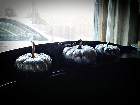 Christmas Gourds 7