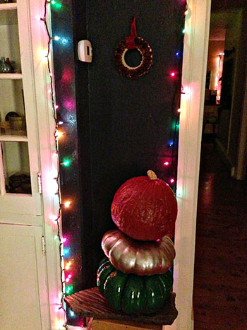 Christmas Gourds 9